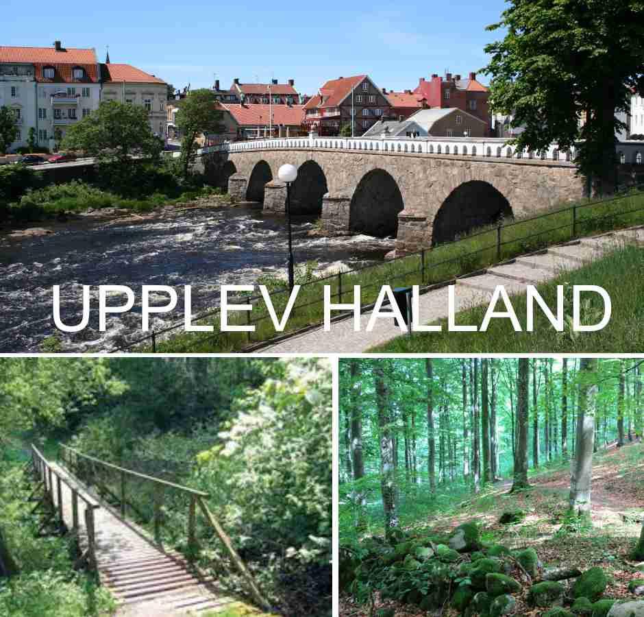 Naturupplevelser i Halland. Vandra i skog och stad.